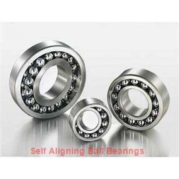 NTN 2210L1  Self Aligning Ball Bearings